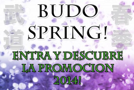 BUDO SPRING 2014