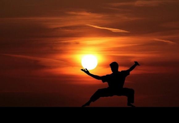 ¿Cómo ver competiciones de artes marciales por internet?