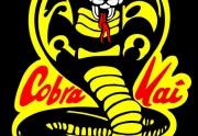 Cobra Kai: la serie sobre kárate que triunfa en Netflix
