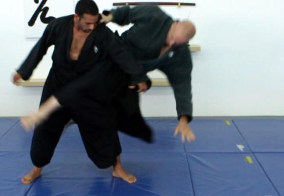 Ninjutsu: técnicas