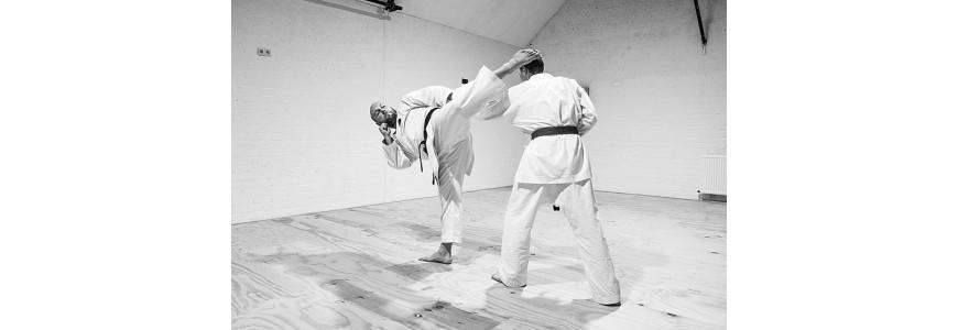 Las artes marciales japonesas más famosas