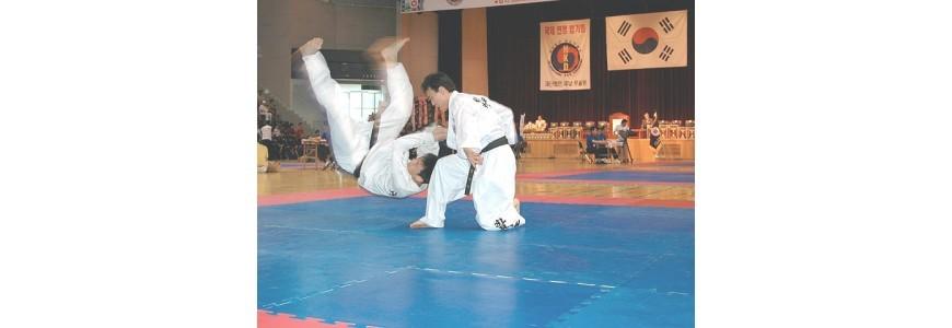 Las artes marciales coreanas