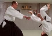 Aikido: las técnicas básicas