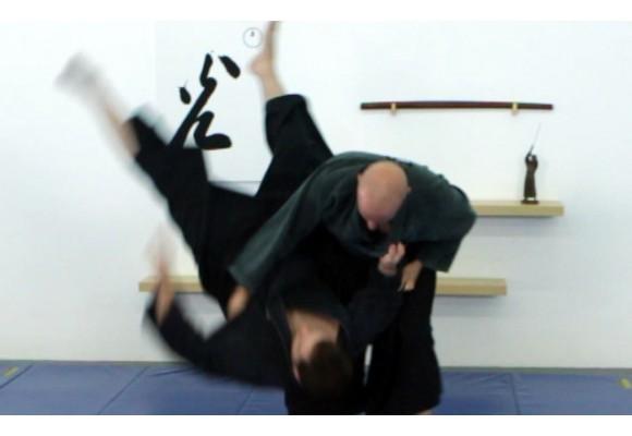 Las primeras técnicas de ninjutsu que debes aprender
